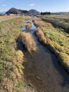 2019年のガサガサは、滋賀県の川、岡山県の川、そしてスッポンとの闘いでした