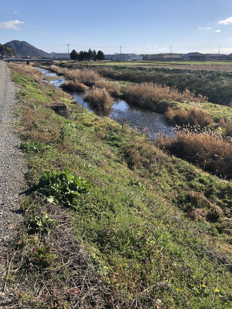 ガサガサ 滋賀県
