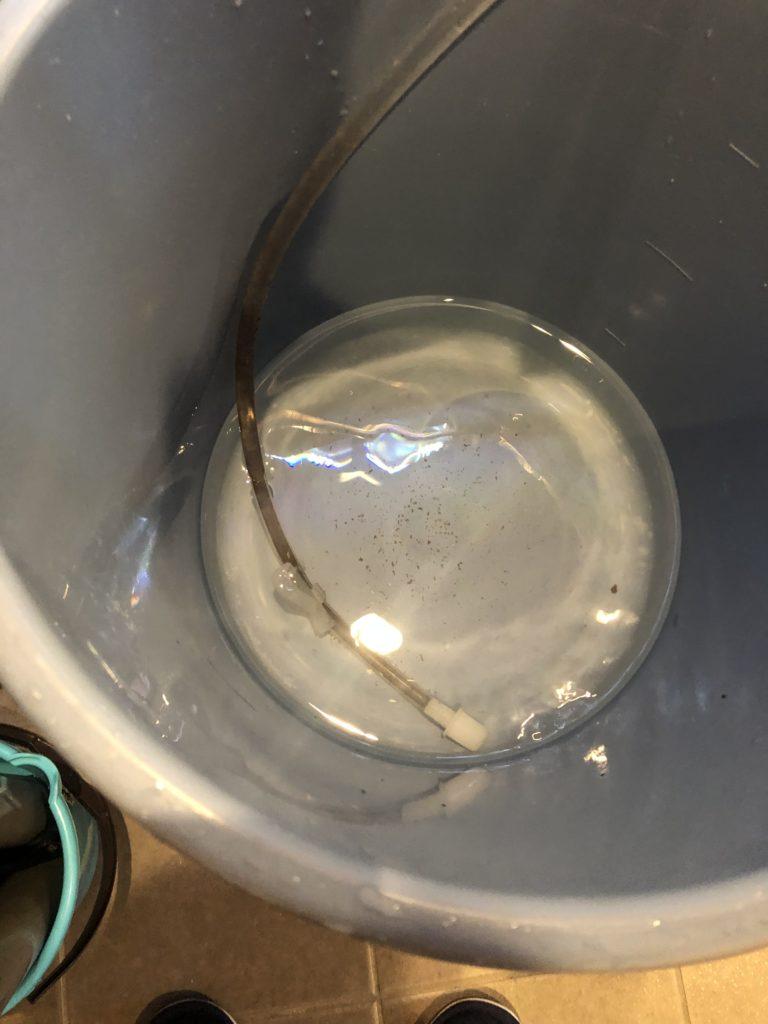 巨大水槽の掃除