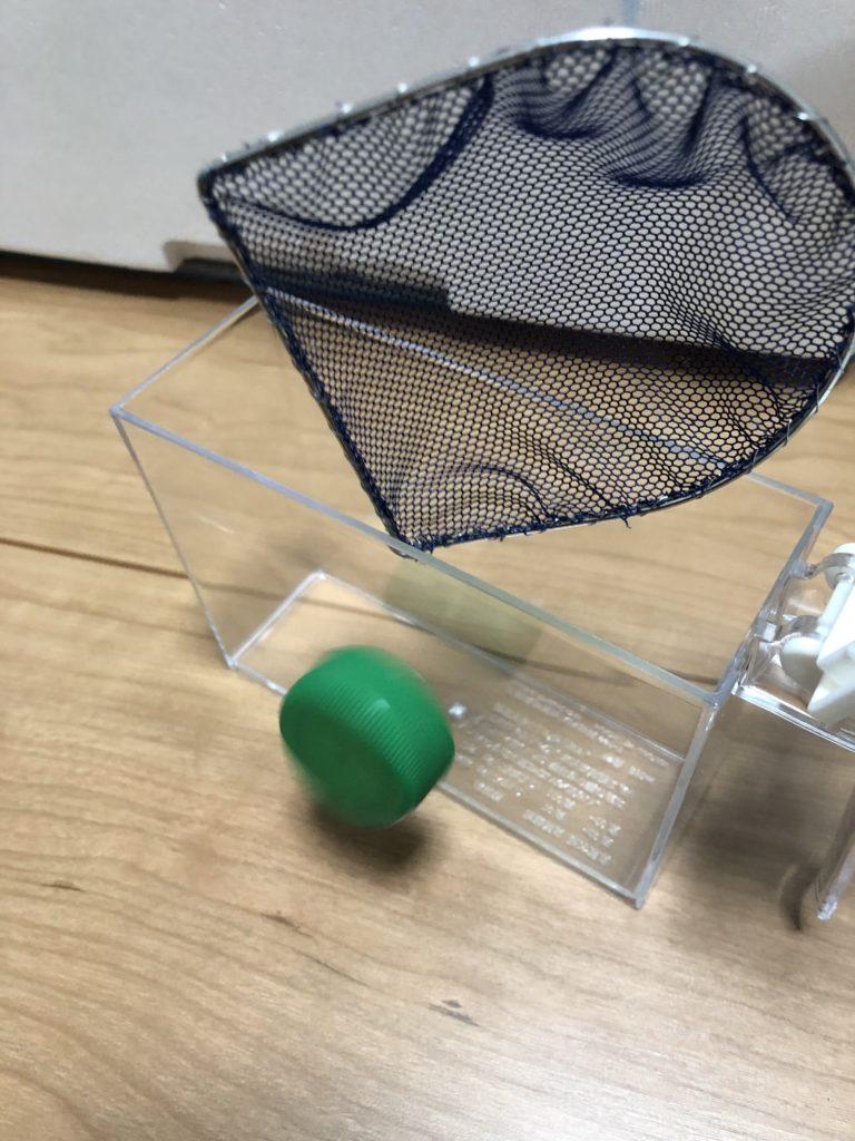 メダカ用の網と、横見ケース