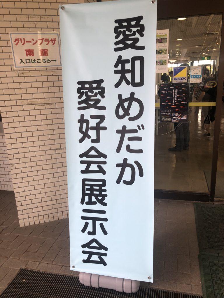 2019年春の鑑賞メダカ展示会