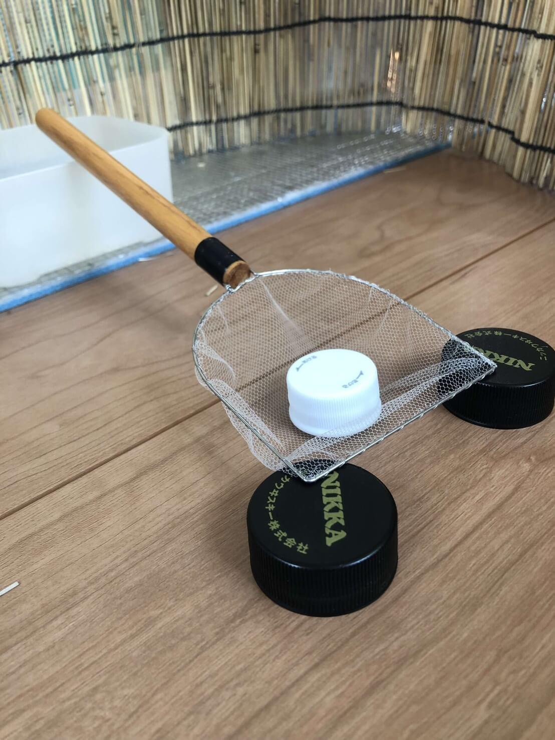メダカ用のタモ網