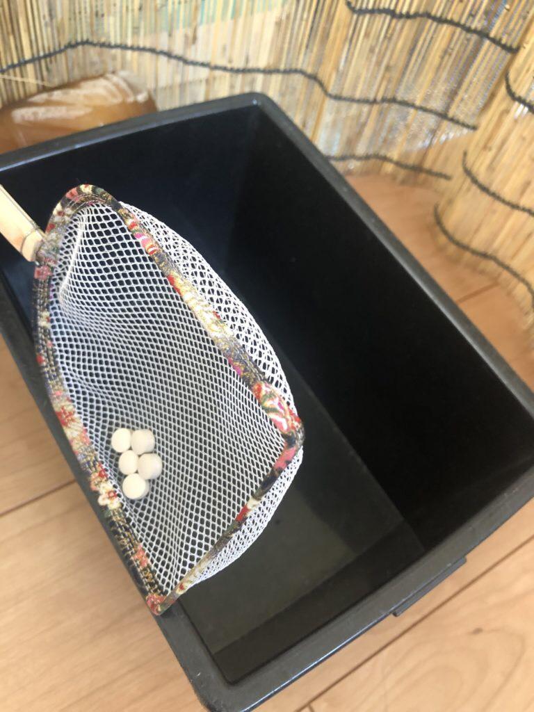 メダカ選別用のタモ網(バイアスタイプ)