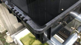 メダカの冬越しと発泡スチロール容器