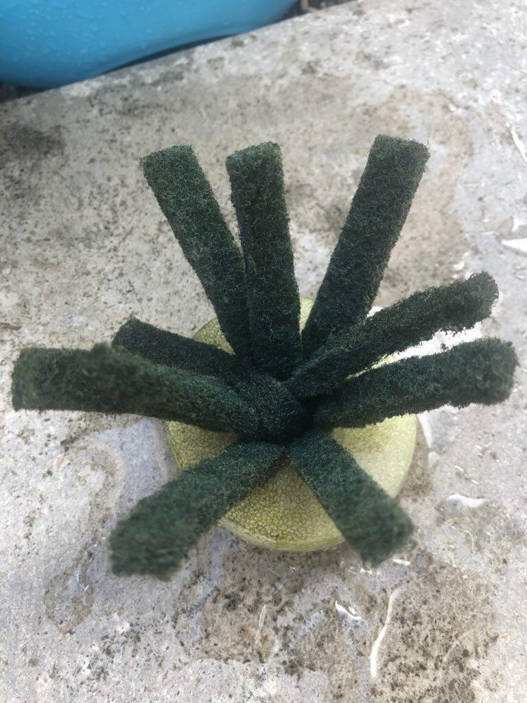 メダカの産卵床を卵を産み付けやすいように工夫