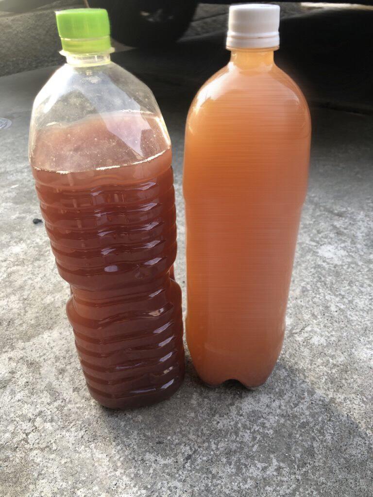 光合成細菌の作り方