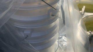 メダカ飼育用の白い容器