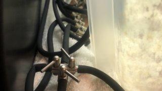 加温容器に使っている分岐のコック