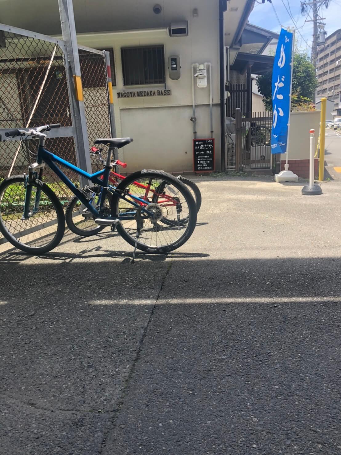 名古屋メダカベースに遊びに行った時の写真