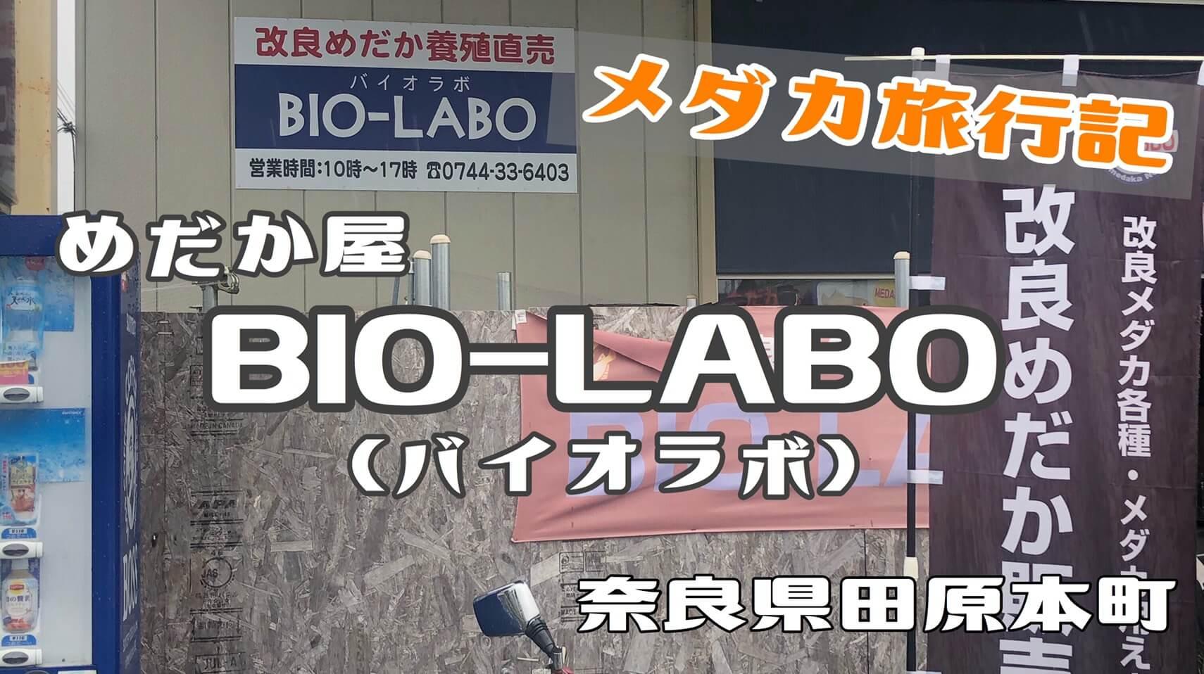 奈良県のめだか屋BIO-LABO(バイオラボ)さんに行ってきました。