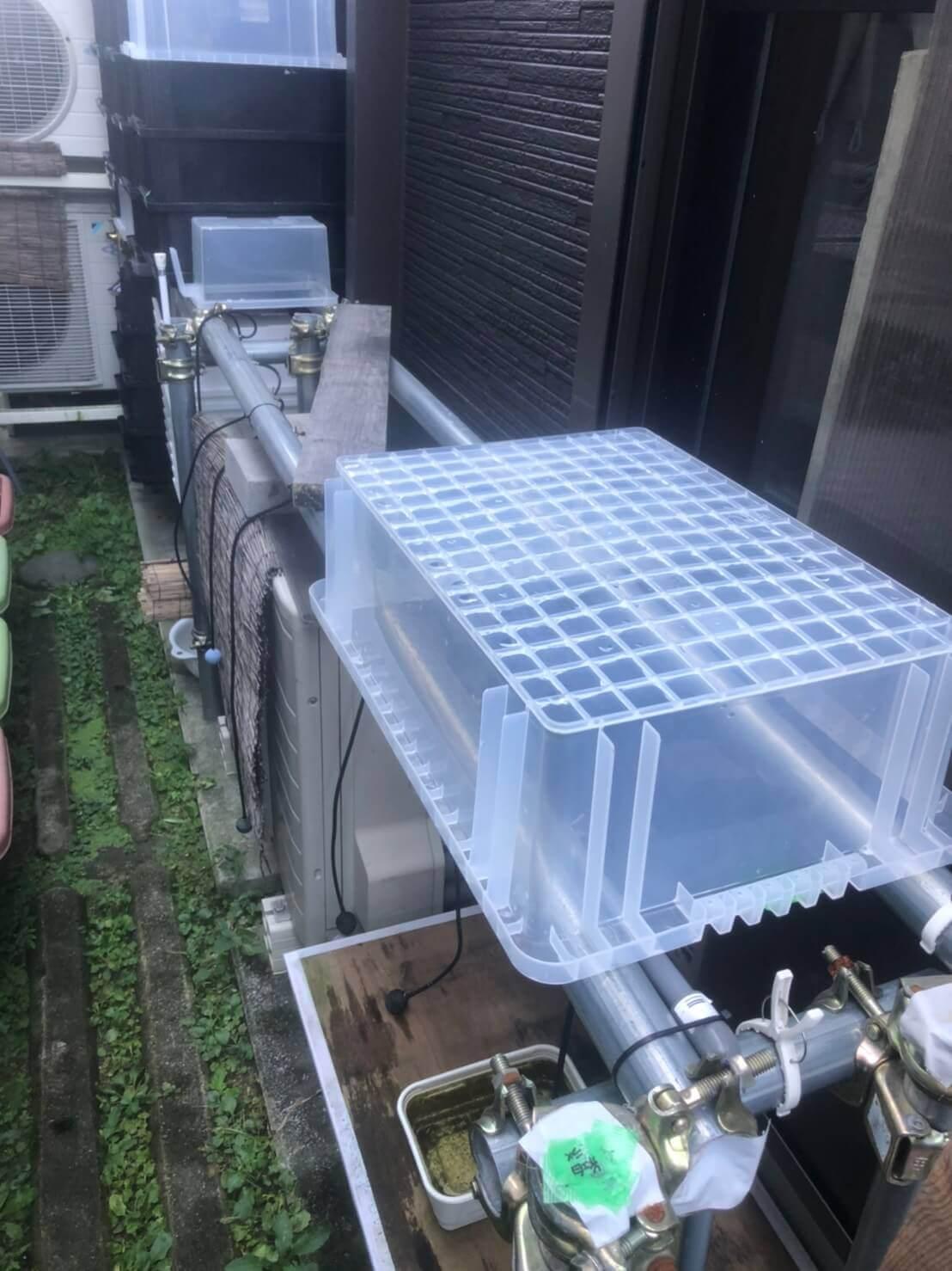 メダカ容器を置く単管パイプのラック