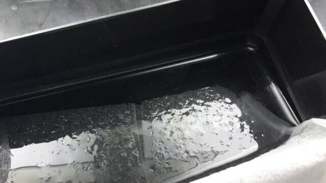ミジンコの飼育容器に浮かぶ油膜