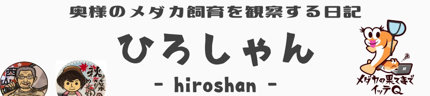 ひろしゃんのメダカブログ(メダカの果てまでイッテQ)