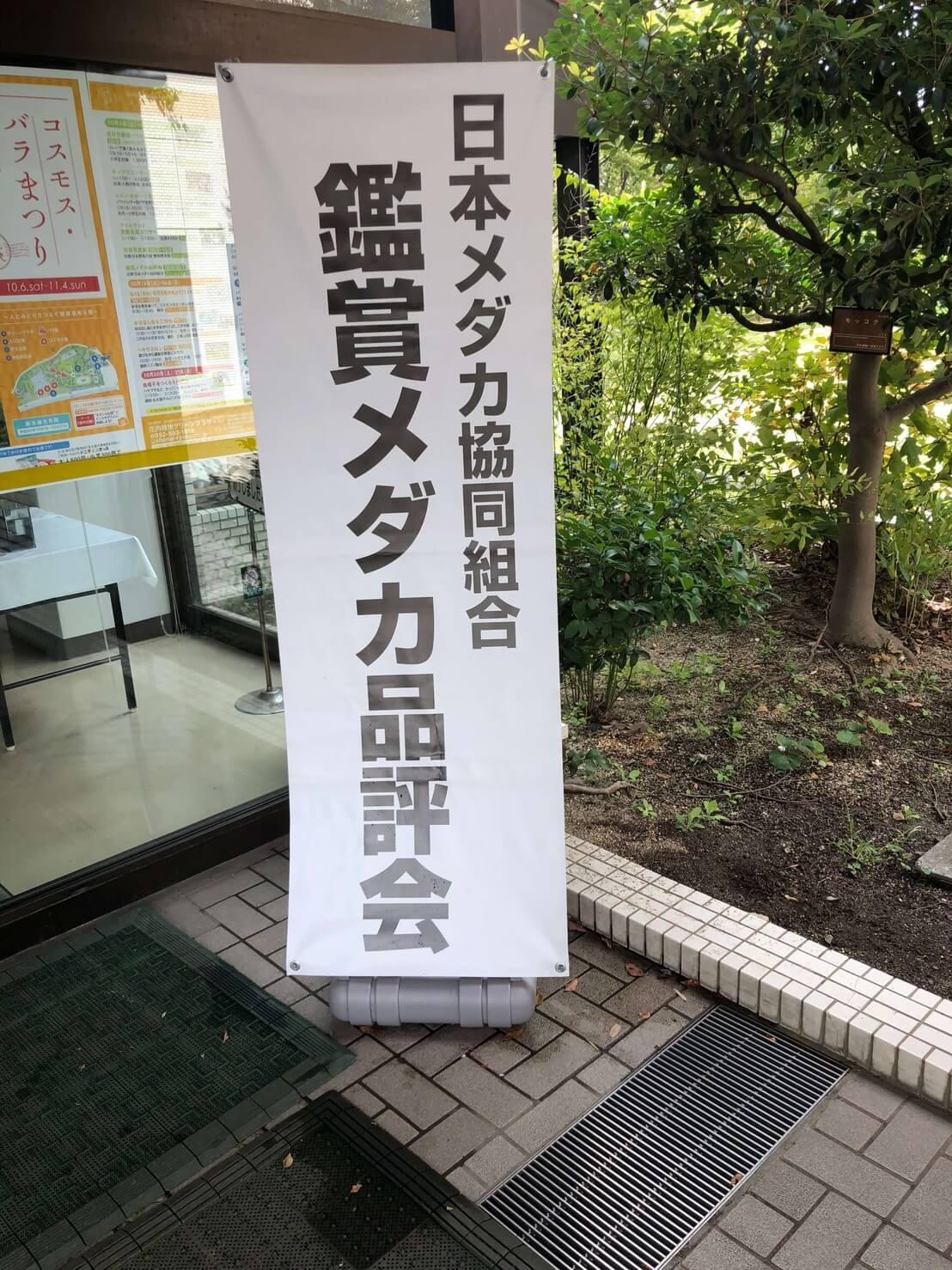メダカ品評会(2018年秋)