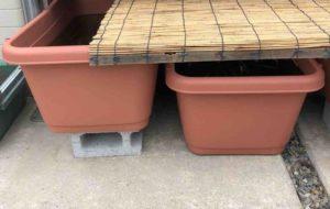 冬越し中のメダカは、発泡スチロールのフタ(蓋)で凍結を防ぐ!