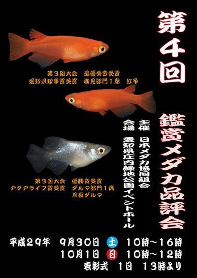 第四回鑑賞メダカ品評会