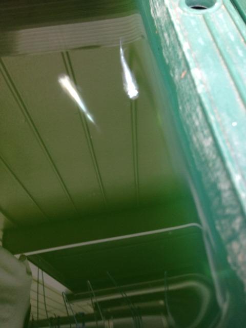 青幹之メダカスーパー光の特徴