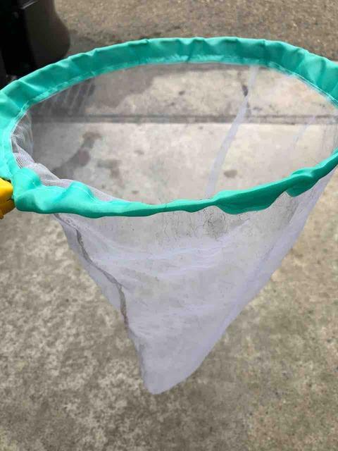 ミジンコを捕獲する用の網
