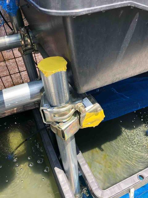 単管パイプで制作したメダカラックにハチ対策
